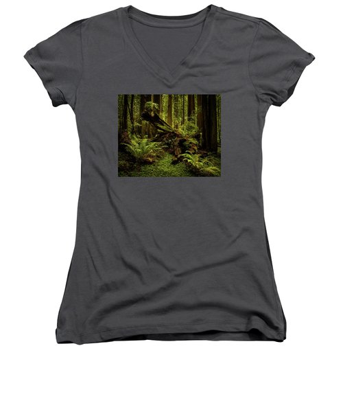 Old Growth Forest Women's V-Neck