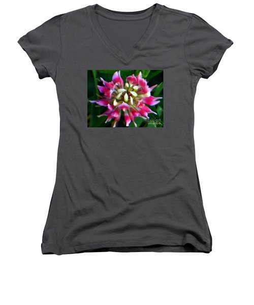 Old Rose Explosive Wildflower Women's V-Neck