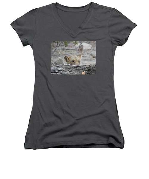 Women's V-Neck T-Shirt (Junior Cut) featuring the photograph On The Lookout by Betty-Anne McDonald