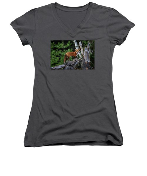 On The Lookout Women's V-Neck T-Shirt (Junior Cut) by Gary Hall