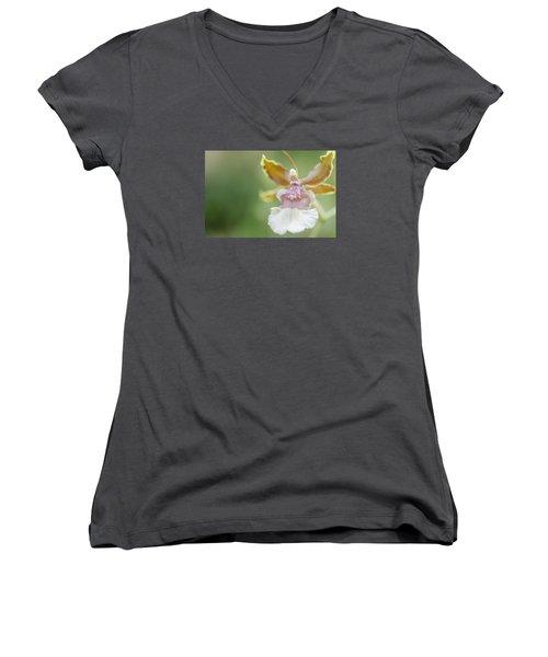 Oncidium Surprise Women's V-Neck T-Shirt (Junior Cut) by Mary Angelini
