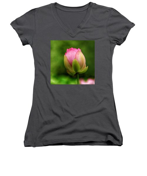 One Bloom Women's V-Neck T-Shirt