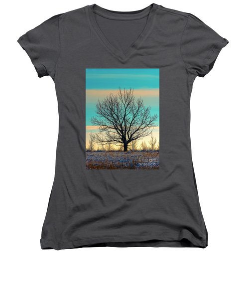 Women's V-Neck T-Shirt (Junior Cut) featuring the photograph One by Nina Stavlund