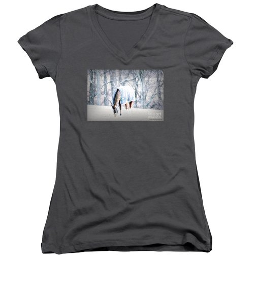 One With The Land In Lancaster County, Pa Women's V-Neck (Athletic Fit)