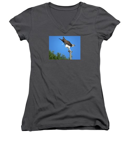 Women's V-Neck T-Shirt (Junior Cut) featuring the photograph Oops by Phyllis Beiser