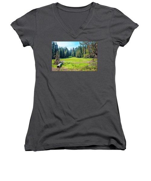 Open Meadow- Women's V-Neck