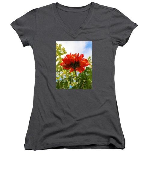 Orange Beauty Women's V-Neck T-Shirt