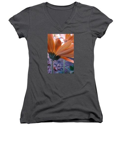 Orange Lady Women's V-Neck T-Shirt
