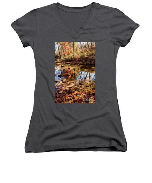 Orange Leaves Women's V-Neck T-Shirt (Junior Cut) by Iris Greenwell