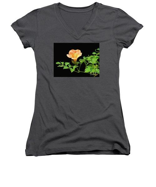Orange Trumpet Flower Women's V-Neck T-Shirt (Junior Cut) by Susan Lafleur