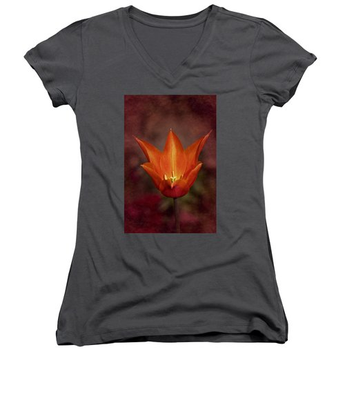 Orange Tulip Women's V-Neck T-Shirt (Junior Cut) by Richard Cummings