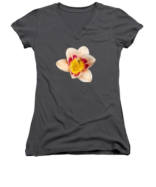 Orange Daylilies Women's V-Neck