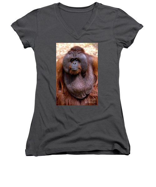 Orangutan Portrait Women's V-Neck T-Shirt