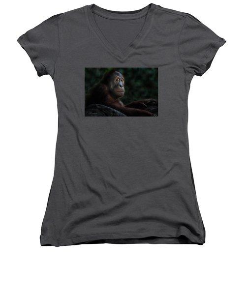 Orangutan Session Women's V-Neck T-Shirt