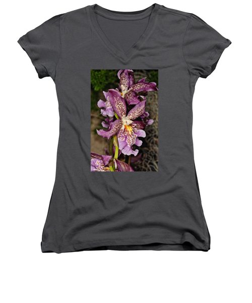 Orchid 347 Women's V-Neck