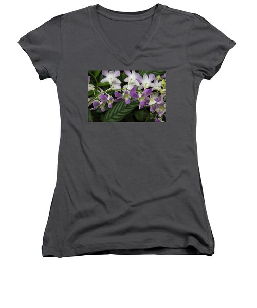 Orchid Beauty Women's V-Neck (Athletic Fit)