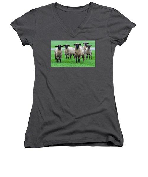 Family Photo Women's V-Neck T-Shirt (Junior Cut) by Scott Warner