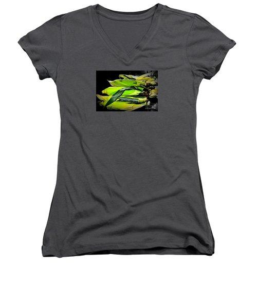 Organic Corn 2 Women's V-Neck T-Shirt (Junior Cut) by Tanya Searcy