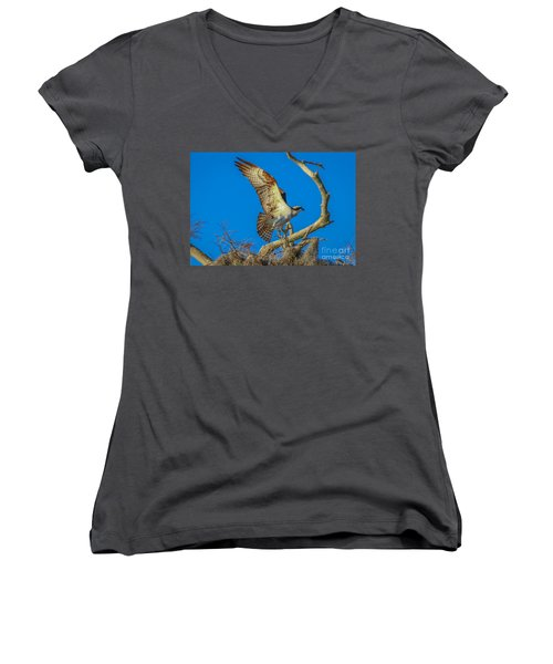 Osprey Landing On Branch Women's V-Neck T-Shirt