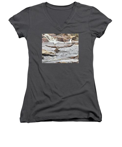 Women's V-Neck T-Shirt featuring the photograph Osprey Takes Fish From Gulls by Debbie Stahre
