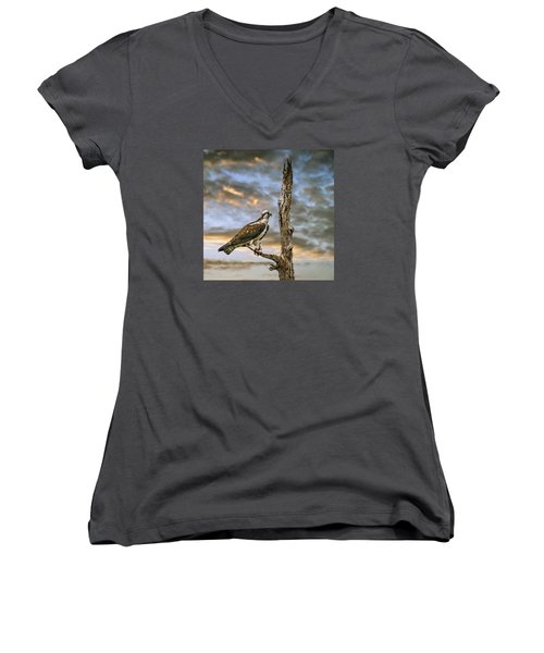 Women's V-Neck T-Shirt (Junior Cut) featuring the photograph Osprey With Supper by Brian Tarr