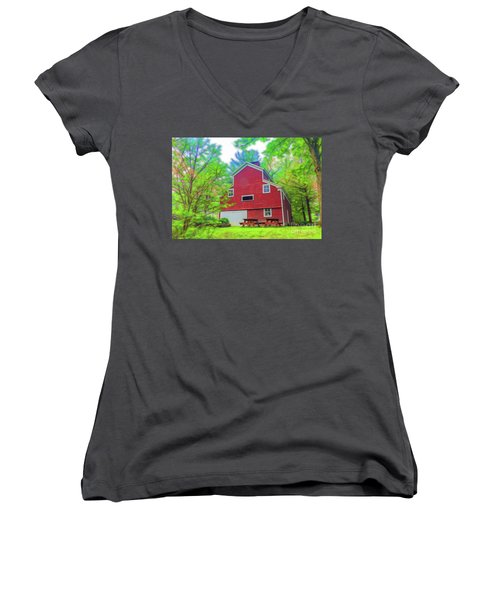 Women's V-Neck T-Shirt (Junior Cut) featuring the photograph Out In The Country by Jim Lepard