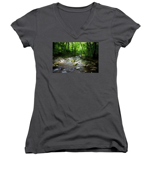 Out Of The Forest Women's V-Neck T-Shirt