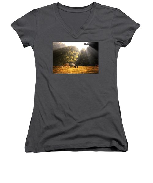 Women's V-Neck T-Shirt (Junior Cut) featuring the photograph Out To Pasture by Mark Fuller