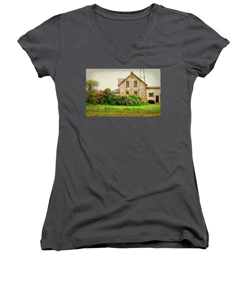 Overlooking The Hedge Women's V-Neck (Athletic Fit)