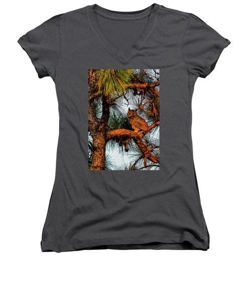 Owl In The Very Last Sunset Light Women's V-Neck T-Shirt