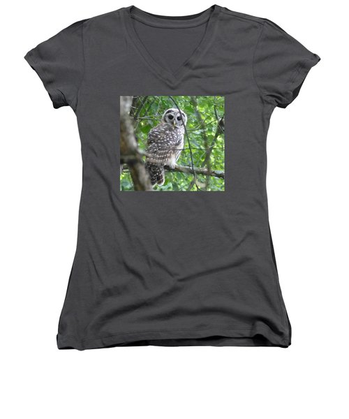 Women's V-Neck T-Shirt (Junior Cut) featuring the photograph Owl On A Limb by Donald C Morgan