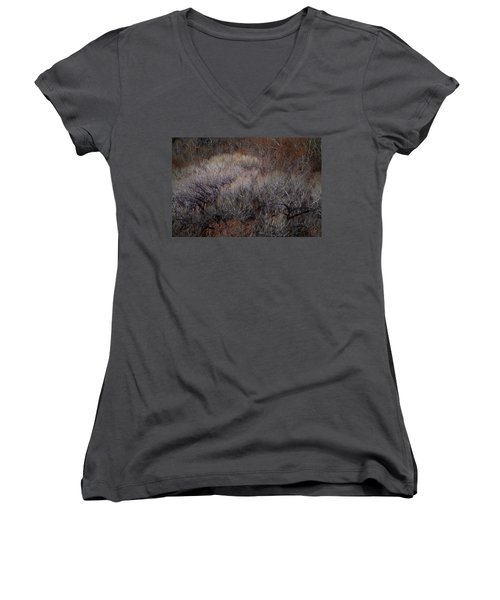 Ozarks Trees #5 Women's V-Neck