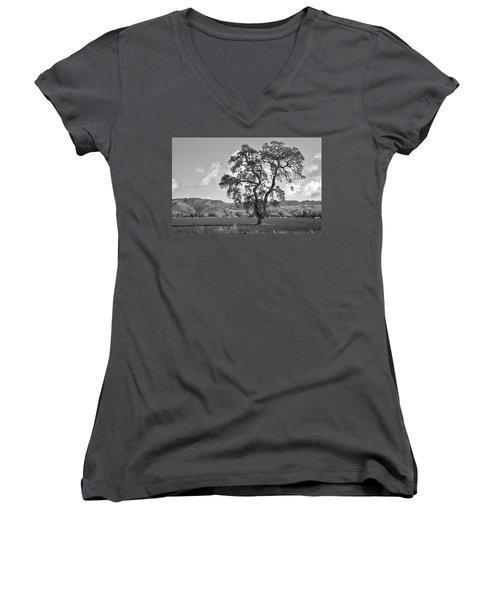 Pacheco Pass Women's V-Neck T-Shirt (Junior Cut)
