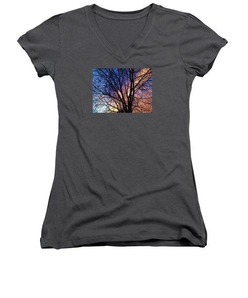 Paintbrush II Women's V-Neck T-Shirt