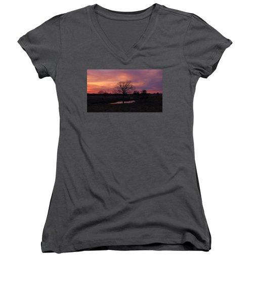 Painted Sky Women's V-Neck T-Shirt (Junior Cut) by Ricardo J Ruiz de Porras