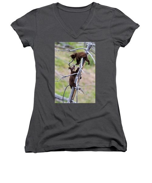 Pair Of Bear Cubs In A Tree Women's V-Neck (Athletic Fit)