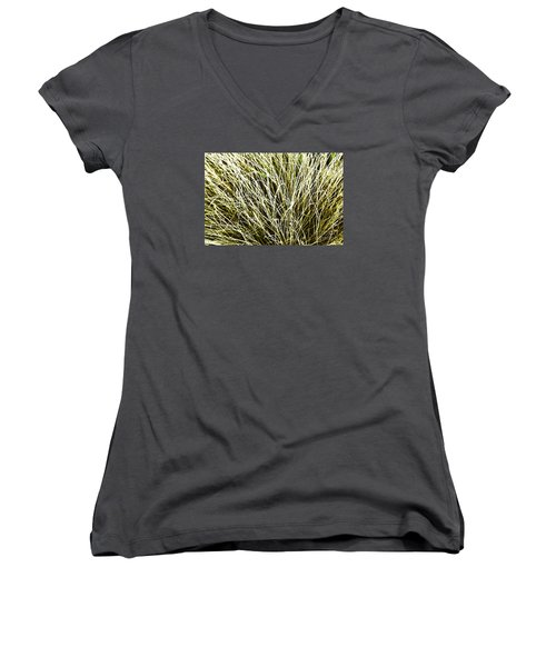 Pale Grasses Women's V-Neck