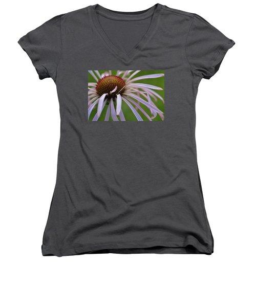 Pale Petals Women's V-Neck T-Shirt