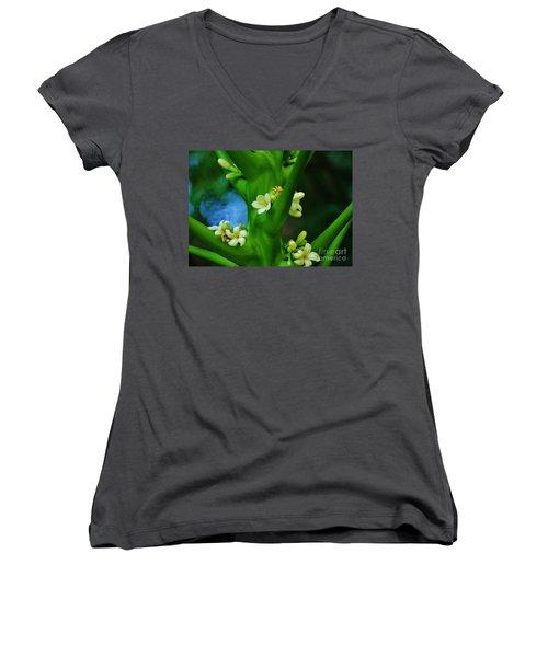 Papaya Blossoms Women's V-Neck T-Shirt