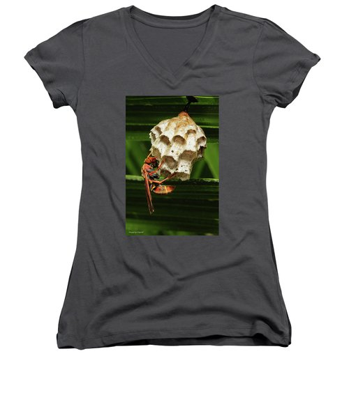Paper Wasps 00666 Women's V-Neck T-Shirt (Junior Cut) by Kevin Chippindall
