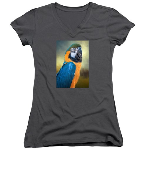 Parrot Women's V-Neck T-Shirt (Junior Cut) by David and Carol Kelly