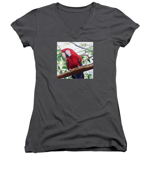 Parrot Portrait Women's V-Neck T-Shirt (Junior Cut)