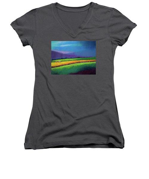 Passing Rain Women's V-Neck T-Shirt (Junior Cut) by David Patterson