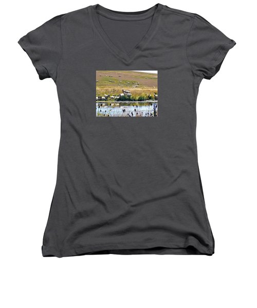 Women's V-Neck T-Shirt (Junior Cut) featuring the photograph Pastoral Sheep By Pond by Deborah Moen