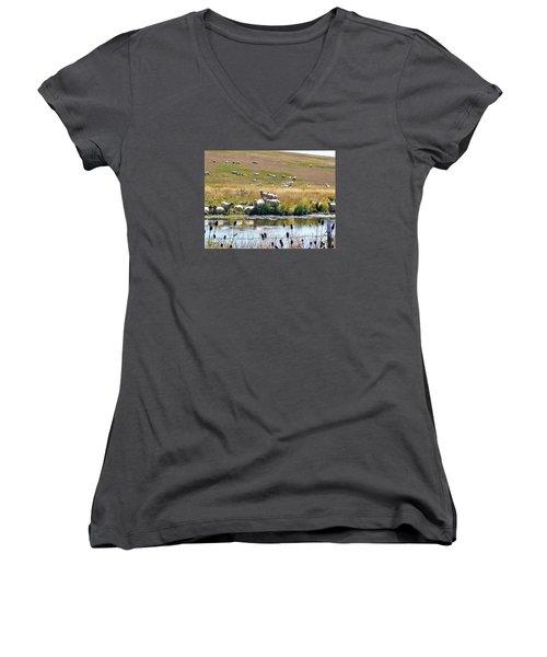 Pastoral Sheep By Pond Women's V-Neck T-Shirt (Junior Cut) by Deborah Moen