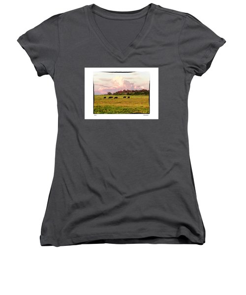 Pasture Women's V-Neck T-Shirt (Junior Cut) by R Thomas Berner