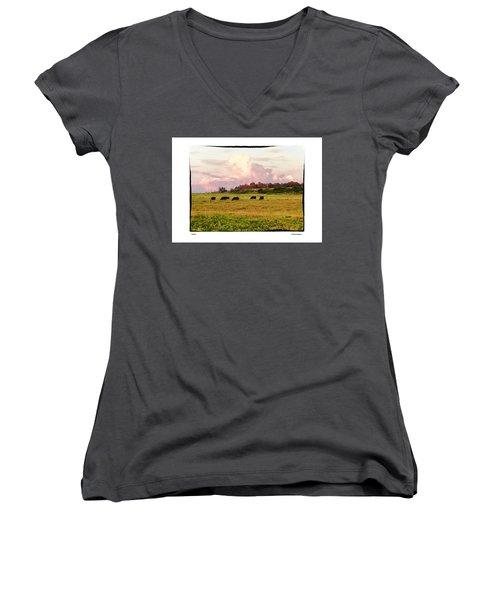 Pasture Women's V-Neck T-Shirt