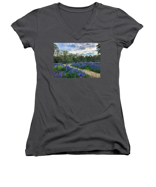 Pathway Through The Flowers Women's V-Neck