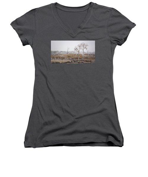 Paynton Pastures Women's V-Neck T-Shirt (Junior Cut) by Ellery Russell