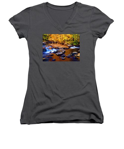 Peaceful Autumn Afternoon  Women's V-Neck T-Shirt